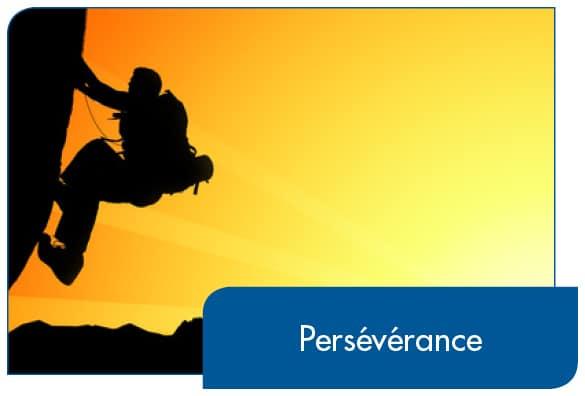 La persévérance  donne aussi  le pouvoir de réaliser une tâche