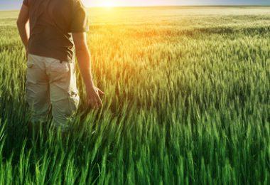 Faire entrer l'abondance et la richesse dans sa vie.